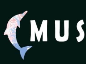 【海豚音乐】开放申请注册
